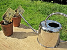 grow wealth spring bank savings account