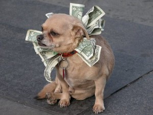 pet tax deduction